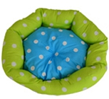 Bed & Cushion